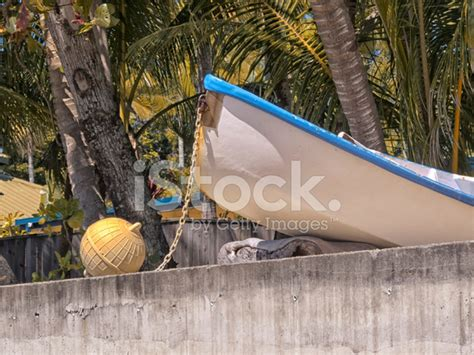boat on buoy boat and buoy on concrete stock photos freeimages