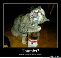 Russian Cat Meme - russian cat by jesterizer meme center