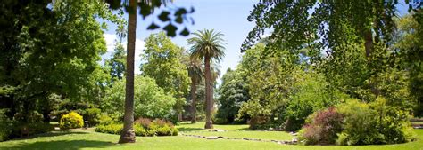 Albury Botanic Gardens Albury Botanic Gardens Drive From Sydney To Melbourne