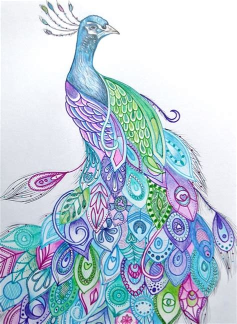 peacock art print by rachel herworth society6