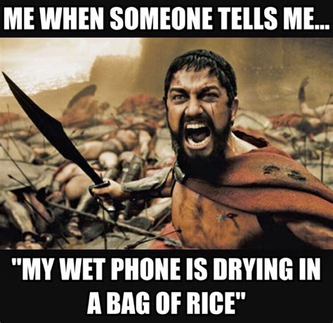 Phone In Rice Meme - how to put your phone in rice 28 images iphone and
