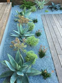 Succulent Garden Layout 25 Best Ideas About Desert Landscaping Backyard On Low Water Landscaping Yard