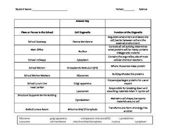 Cell School Analogy Worksheet by Analogies Worksheet High School Worksheets For School