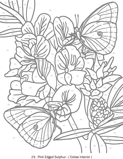 color by number coloring books for adults 344 best dover sles butterfly bird and flower