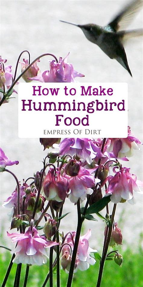 how to make hummingbird food gardens make hummingbird