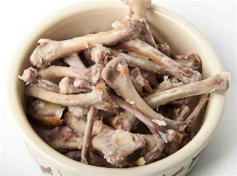 dogs and chicken bones danger can dogs eat chicken bones ultimate home