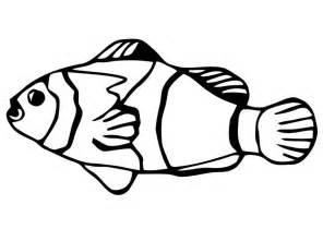 dibujo colorear pez carpa dorada img 20669