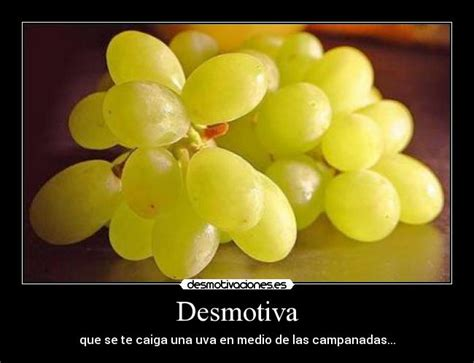 imagenes graciosas uvas im 225 genes y carteles de nochevieja pag 13 desmotivaciones