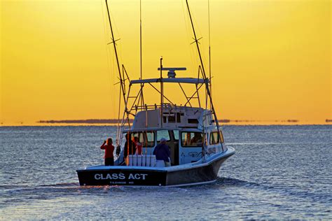charter boat fishing chesapeake bay sea charters agency the top 10 usa fishing charters