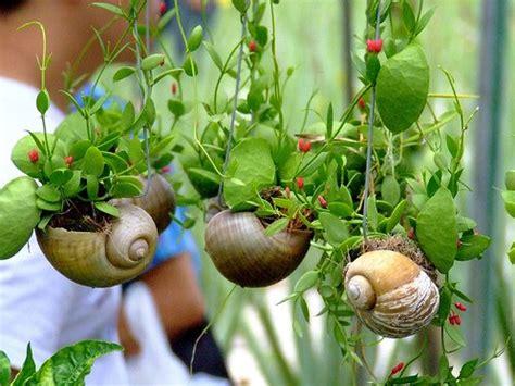 eco garden ideas picture eco garden ideas socialcafe magazine