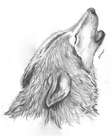 Imagenes Para Dibujar A Lapiz De Lobos | dibujos de lobos a lapiz imagui