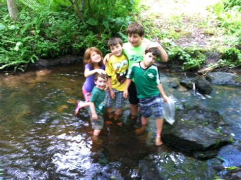 our own backyard thursday treks our own backyard mad scientist crazy mom