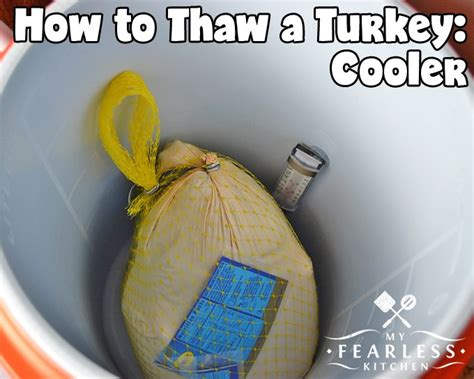 thawing turkey in sink how to thaw a turkey my fearless kitchen