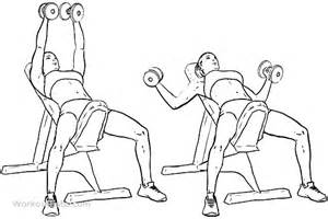 incline dumbell bench incline bench dumbbell fly workoutlabs