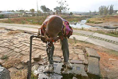 jardineria casi sin agua casi 900 millones de personas viven sin agua potable y el triple sin saneamiento