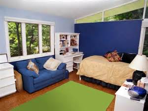 it s my room and i ll paint it if i want to hgtv