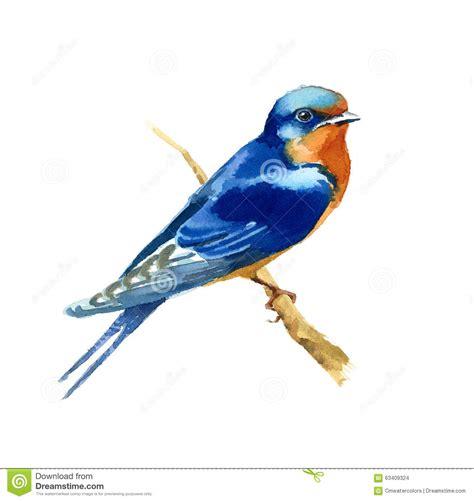 scheune gemalt scheunen schwalben aquarell vogel illustration handgemalt