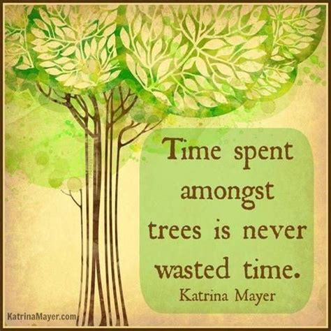 tree quotes quotes about trees and roots quotesgram