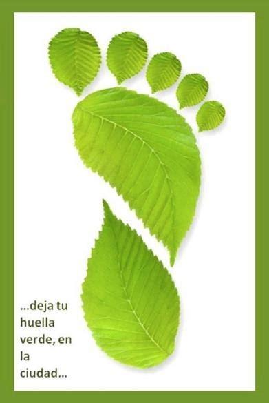 imagenes huellas verdes 17 mejores im 225 genes sobre huellas en pinterest tiendas