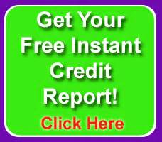 Instant free credit report check with credit score