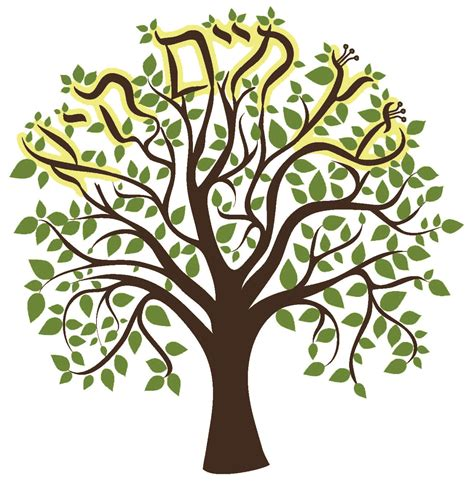 tree of life temple sinai tree of life etz chaim temple sinai