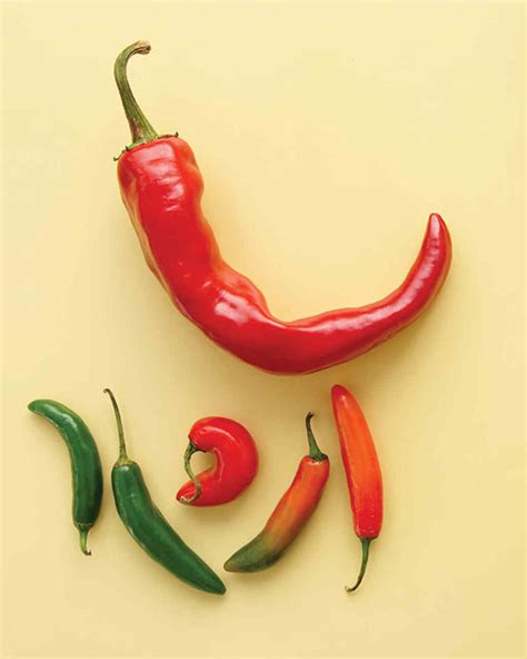 Chili Pepper Home Decor 100 chili pepper home decor pepper bouquet pepper