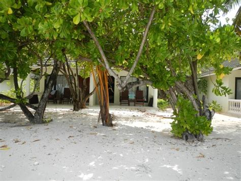 paradise resort maldives superior bungalow suits at two sides picture of paradise island