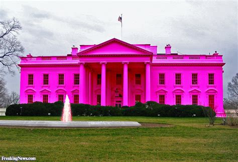 the pink house the pink white house pictures freaking news
