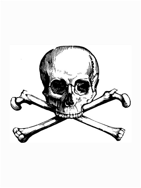 Skull And Bones Coloring Pages Http//wwwpic2flycom/Skull  sketch template