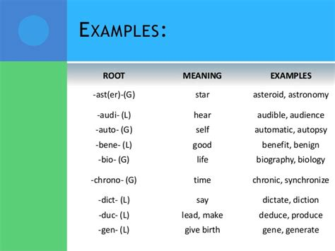 biography root word meaning affixes