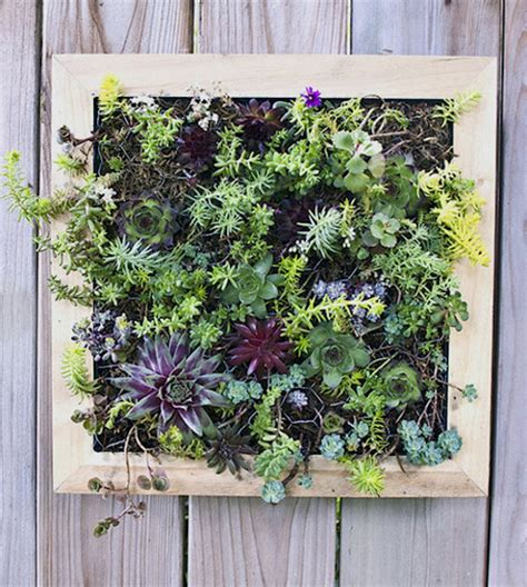 diy vertical gardens and planters craftfoxes