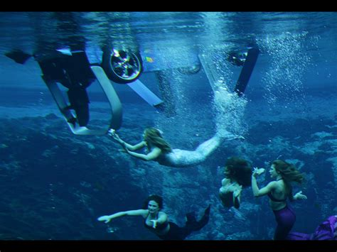 imagenes reales de sirenas violetas sirenas mitologia griega