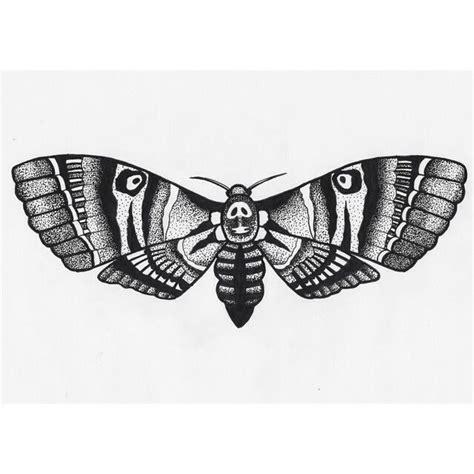 tattoo pen hawk hawk moth tattoo tattoo pinterest moth tattoo hawk