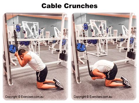 cable crunches exercisescomau
