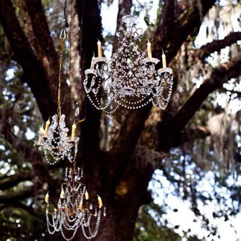Chandeliers In Trees 17 Best Images About I Chandeliers In Trees On Trees A Tree And Receptions