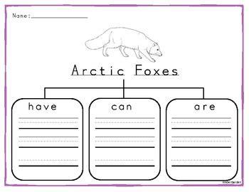 Arctic Animals Graphic Organizer By Kinder Garden Tpt