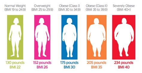 how do morbidly obese people go to the bathroom 10 characteristics of morbidly obese thrombocytes