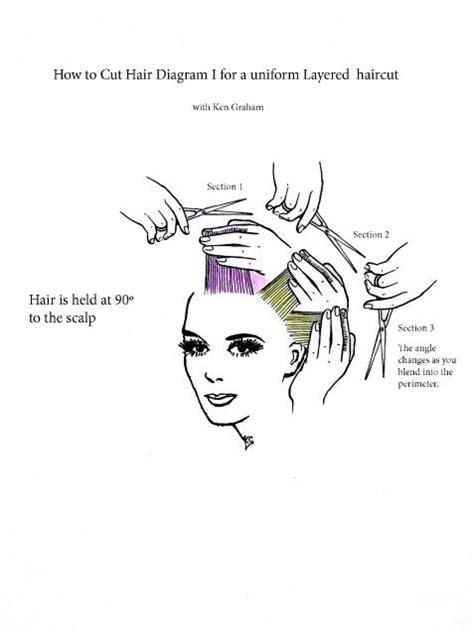 diagram   uniform layered hair cut straightened