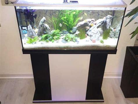 schrank 50x50x50 aquarium unterschrank eheim mp komplettaquarium scubabay