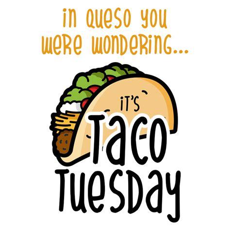 queso   wondering  taco tuesday  shirt