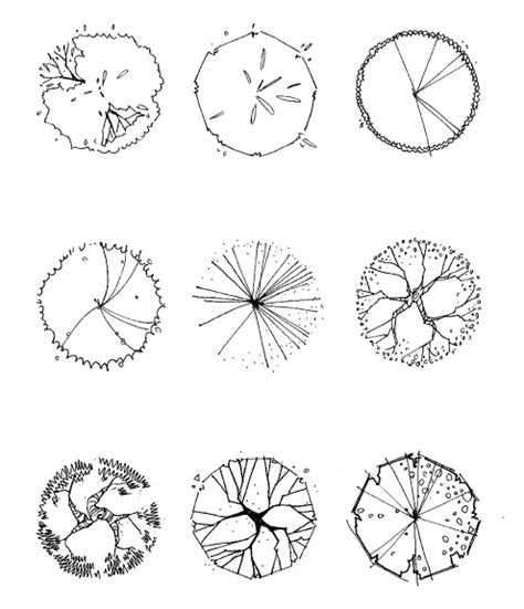 engineering drawing tree template tree symbol in plan drawing cho hee song