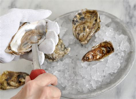 the chef in my oyster oysters part 2 how to buy clean and open oysters