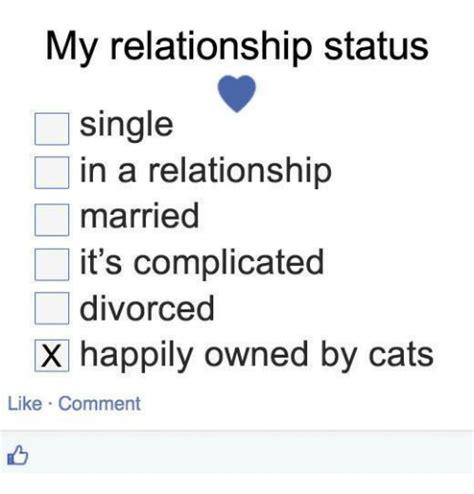 Single Relationship Memes - 25 best memes about it s complicated it s complicated memes