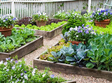 learn   build raised vegetable beds hgtv