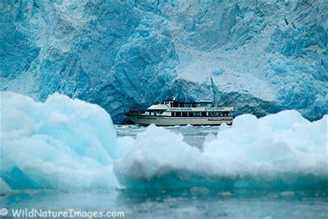 kenai boat tours kenai fjords national park so very different michael s
