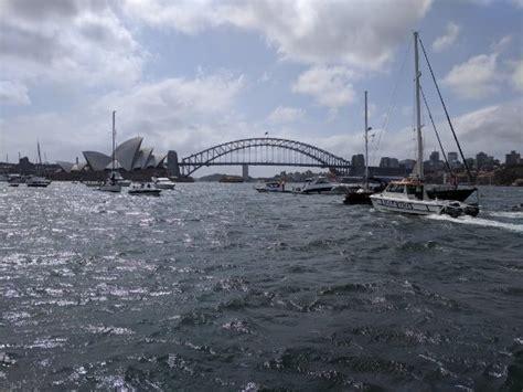 catamaran cruise reviews sydney catamaran cruises picture of sydney catamaran