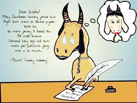 Eid Memes - the typical eid ul adha memes ary zauq official