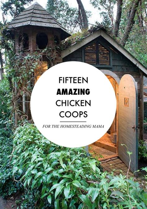 fly the coop fifteen amazing chicken coops for the