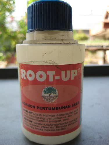 Penumbuh Akar Root Up farm education business and entrepreneurship