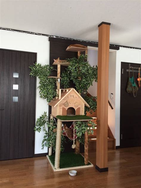 DIY Cat Tree Offers Alternative to Conventional Scratching